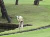 43_golf_04_0731
