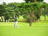 43_golf_04_1052