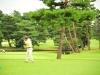 43_golf_04_1091