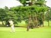 43_golf_04_1094
