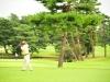 43_golf_04_1096