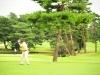 43_golf_04_1097