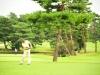 43_golf_04_1099