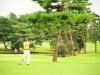 43_golf_04_1100