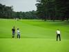 43_golf_04_1255