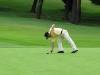 43_golf_04_1305
