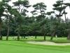 43_golf_05_79