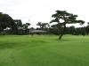 43_golf_06_02
