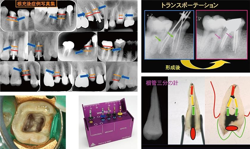 dr_kinomoto_03