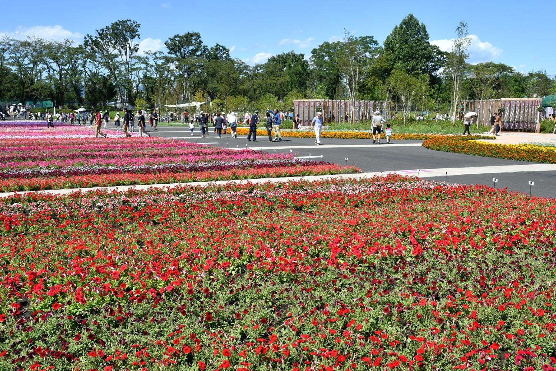 (2017/09/19〜)「第34回全国都市緑化はちおうじフェア八王子100周年アーカイブガーデン」