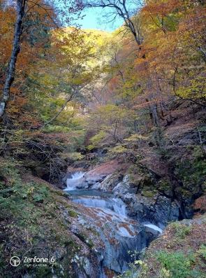 (2019/11/12〜)「西沢渓谷の紅葉」