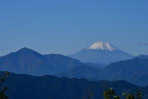 (2019/11/20〜)「秋深まる高尾山」