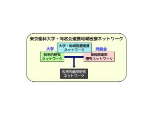 tdc_branding_03
