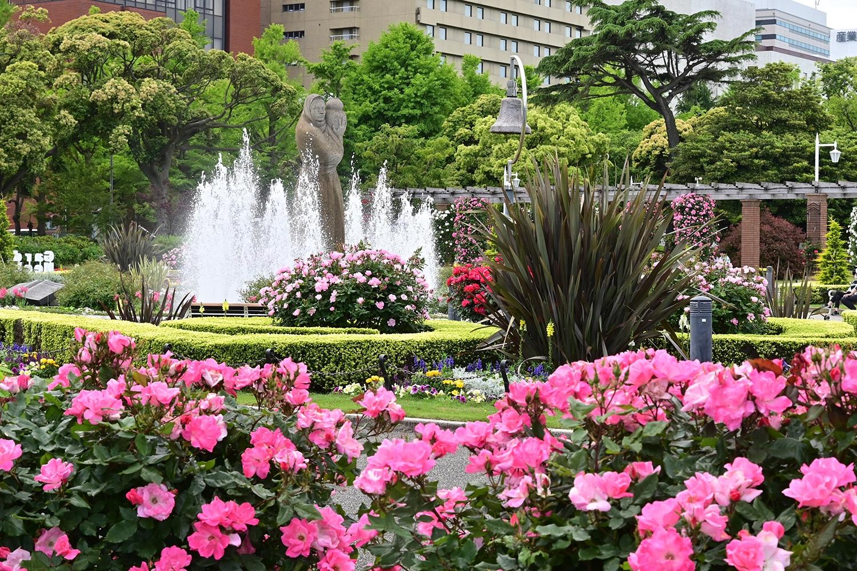 (2020/06/03〜)「昼下がりの山下公園」