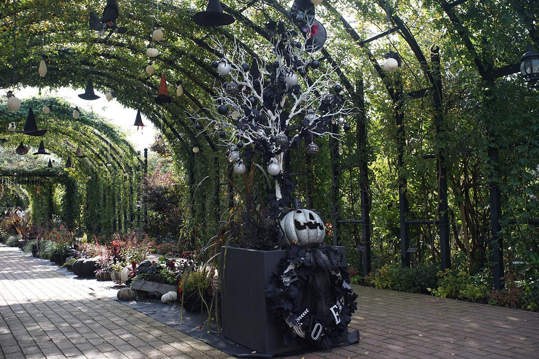 (2020/10/11〜)「横浜イングリッシュガーデンのハロウィン」