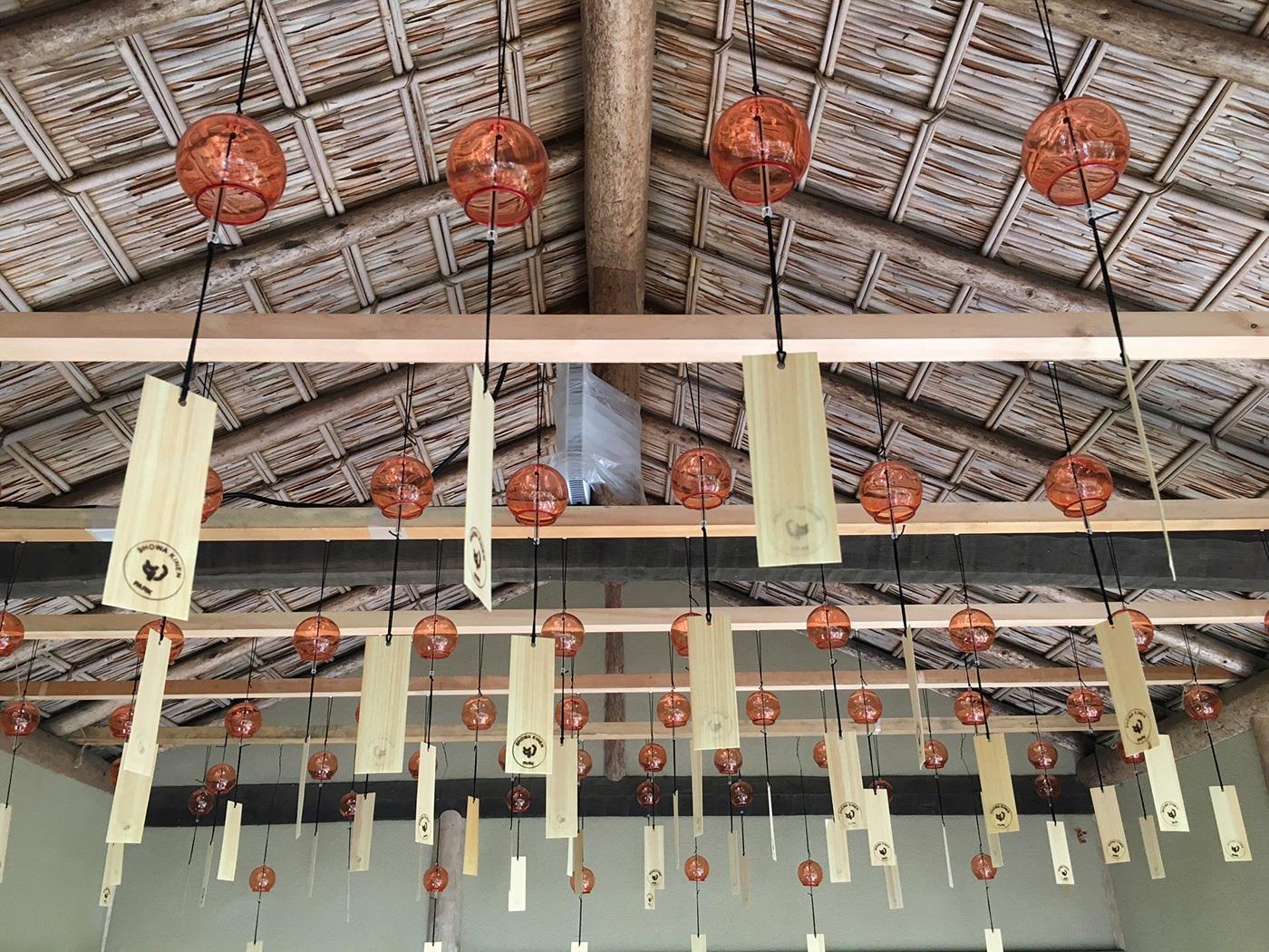 (2020/11/08〜)「国営昭和記念公園・日本庭園」