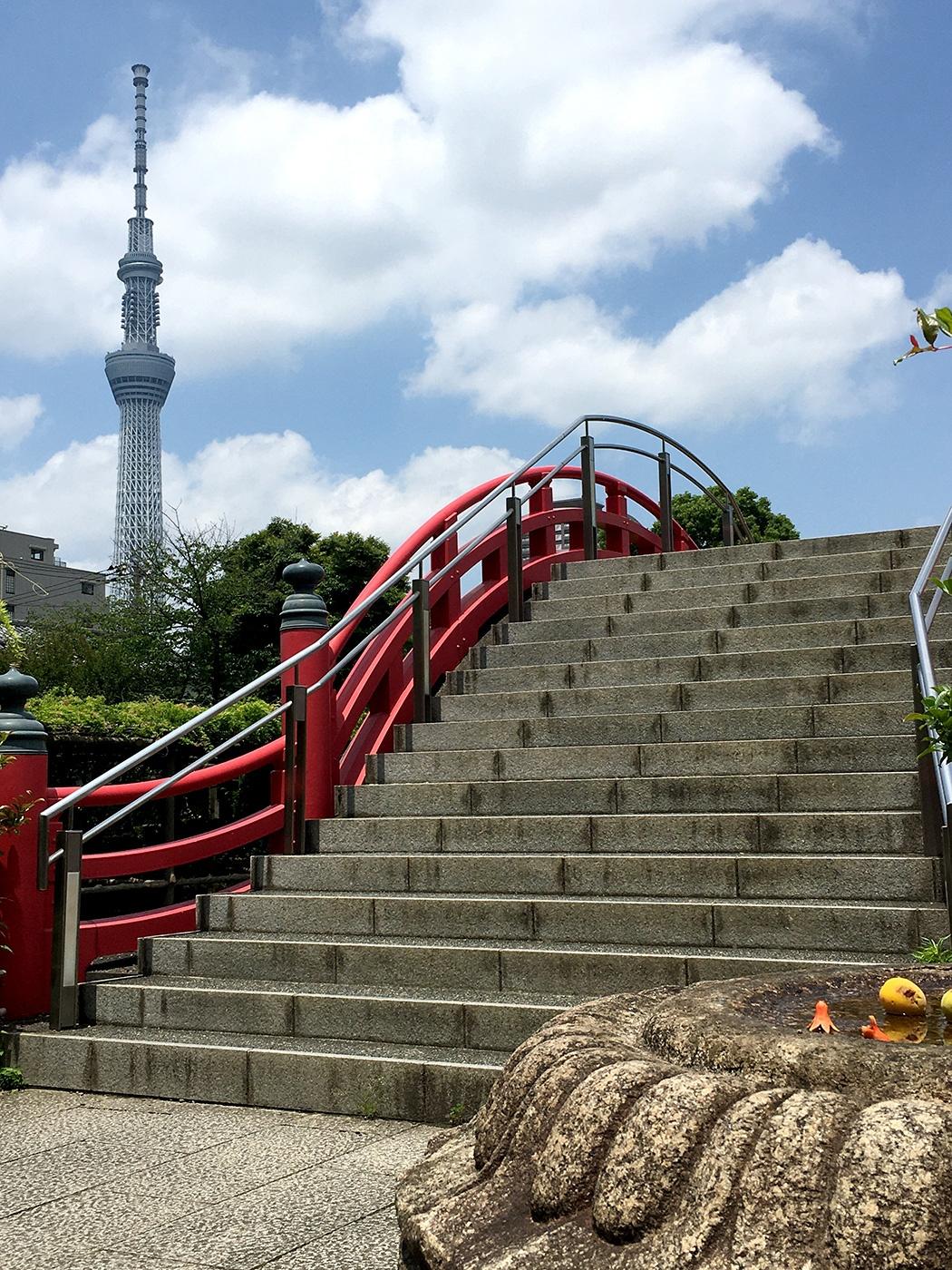 (2021年6月4日〜)「亀戸天神社の太鼓橋(男橋)と東京スカイツリー」