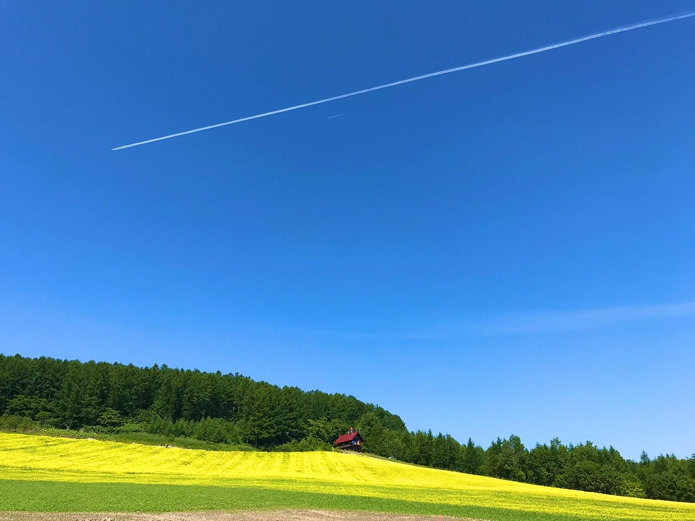 (2021年6月27日〜)「ひこうき雲」