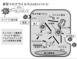 prof_okuda_02
