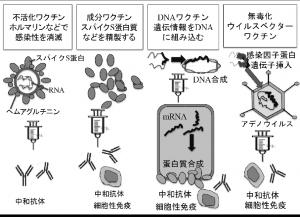 prof_okuda_03