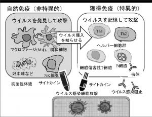 prof_okuda_07