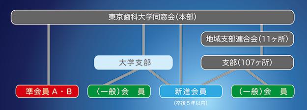 東京歯科大学同窓会 組織図/同窓会構成図